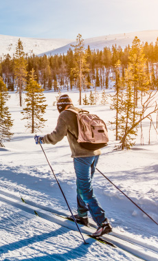 Nordic Skiing in Montana and Yellowstone National Park