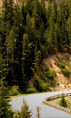 Scenic Drives in Montana and Yellowstone National Park