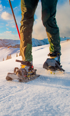 Snowshoeing in Montana and Yellowstone National Park